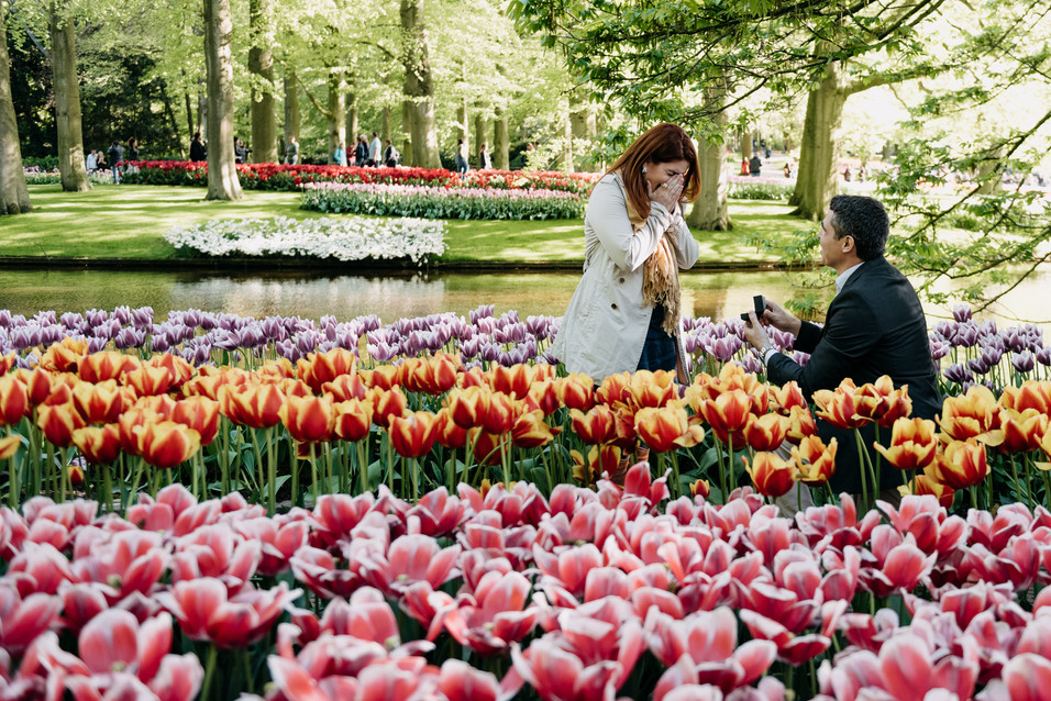 Keukenhof proposal photography
