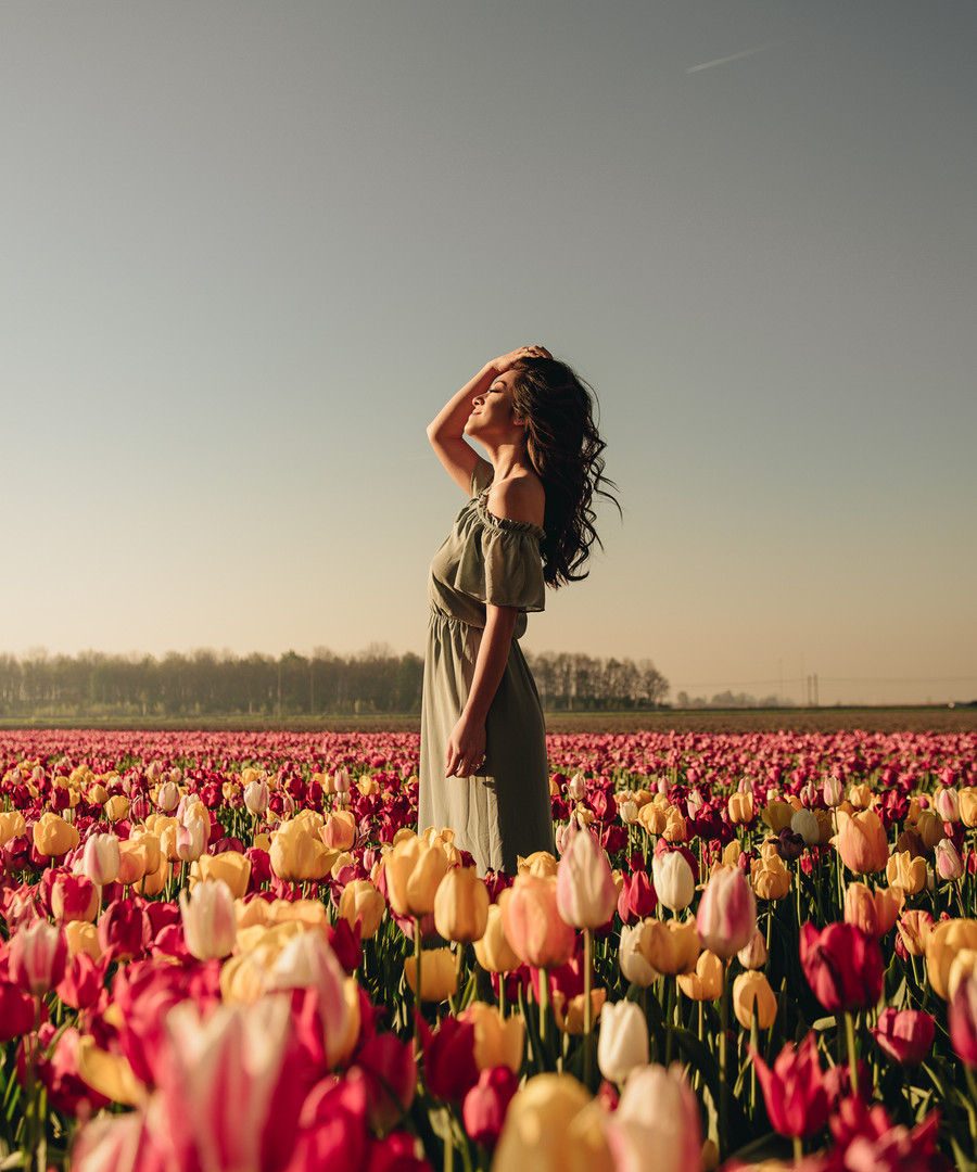 Tulip Fields Photography