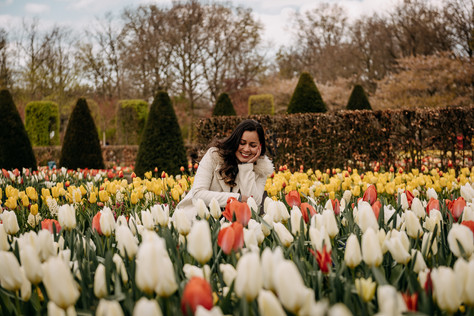 Photo sesison at Keukenhof