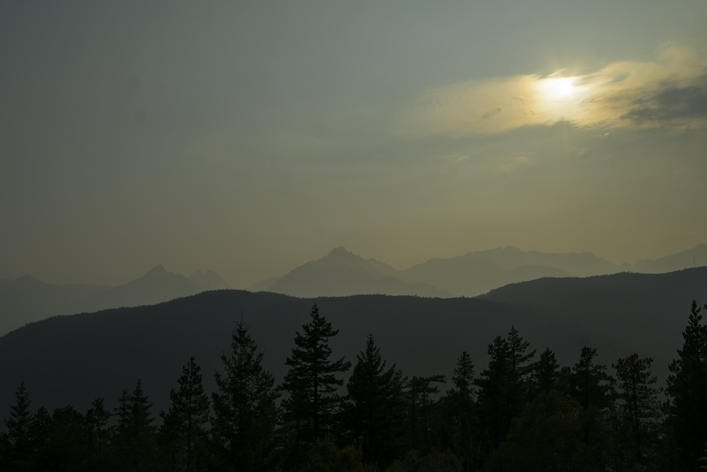 EWS Whistler smokey skye