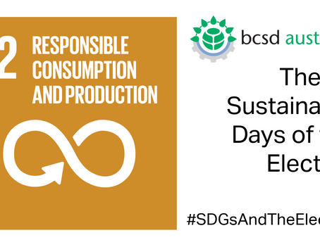 SDG12: The 17 Sustainable Days of the Election