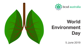 CEO Insights: World Environment Day 2019