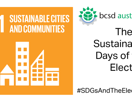 SDG11: The 17 Sustainable Days of the Election