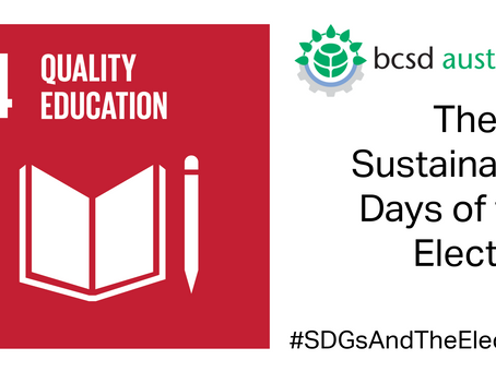 SDG4: The 17 Sustainable Days of the Election
