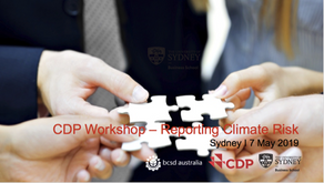 Event: CDP reporting workshop