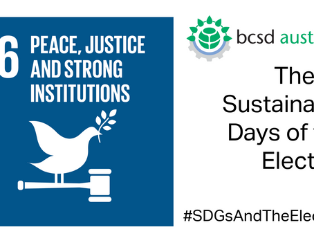 SDG16: The 17 Sustainable Days of the Election