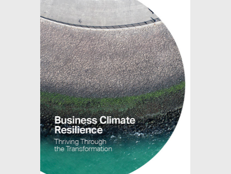 Media release: WBCSD Business Climate Resilience report