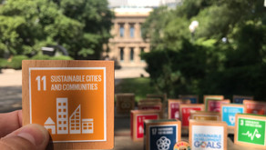 Councils invited to join the SDG Cities Challenge