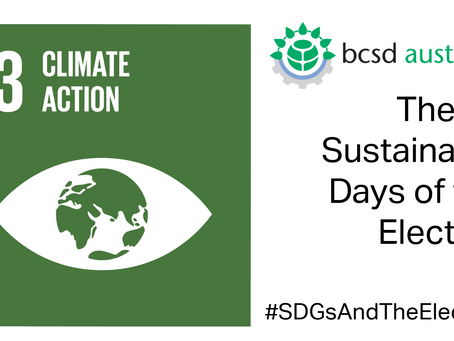 SDG13: The 17 Sustainable Days of the Election
