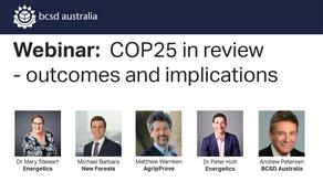 On-demand webinar: COP25 final outcomes