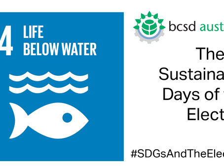 SDG14: The 17 Sustainable Days of the Election