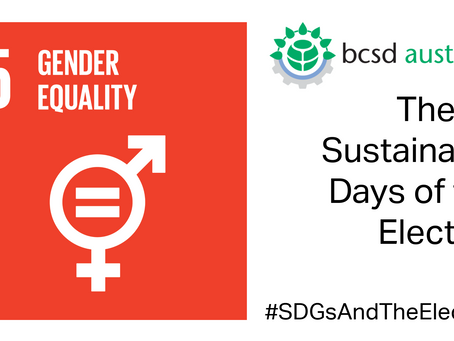 SDG5: The 17 Sustainable Days of the Election