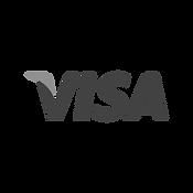 VisaR.png