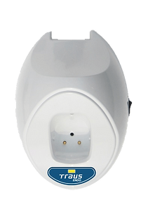 Traus-Endo-Motor.png