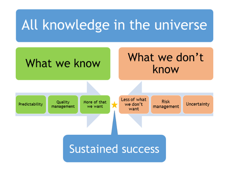 A knowledge-based model for sustained success