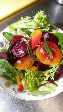 Spring Jewels Salad