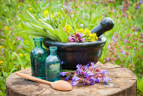 herbal-outdoors-image1.png