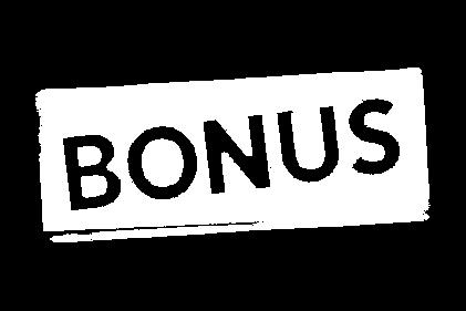 Bonus_wht.png