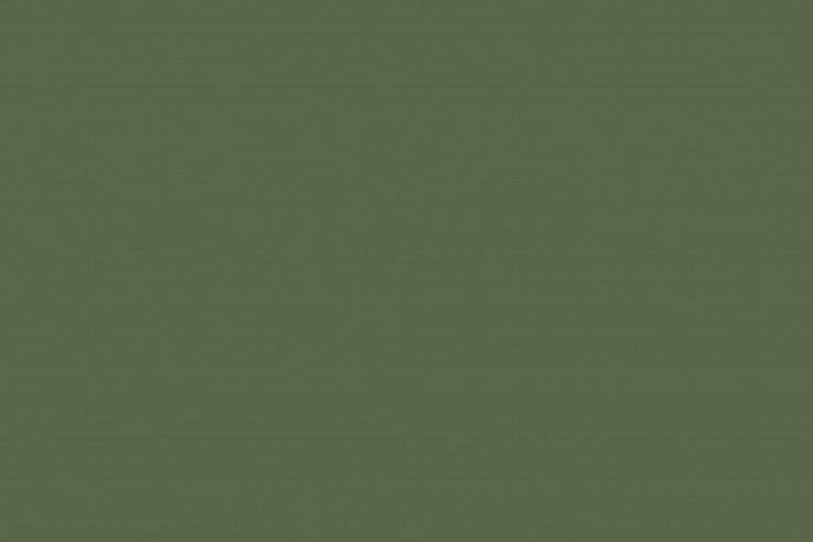 olive-green-bacground.jpg