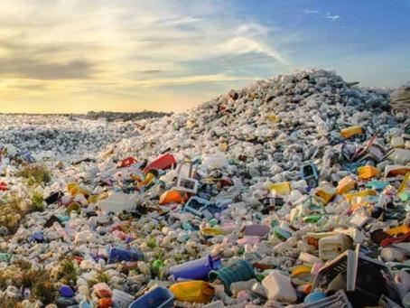 Кадры для зеленой экономики. Почему тормозит мусорная реформа?