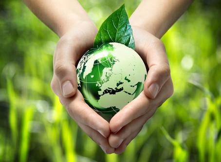 Недели экологического образования и просвещения