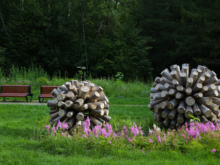 Рокарий и площадки для пинг-понга: в Тропарево обустроен Сад здоровья