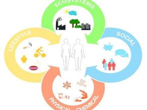 Экспосом: изучение совокупности воздействий окружающей среды на протяжении всей жизни