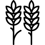 wheats.png
