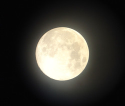 Honoring Moontime