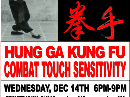 Hung Ga Kung Fu Combat Touch Sensitivity Seminar