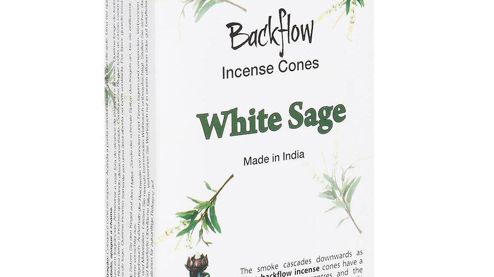 STAMFORD WHITE SAGE BACKFLOW INCENSE CONES