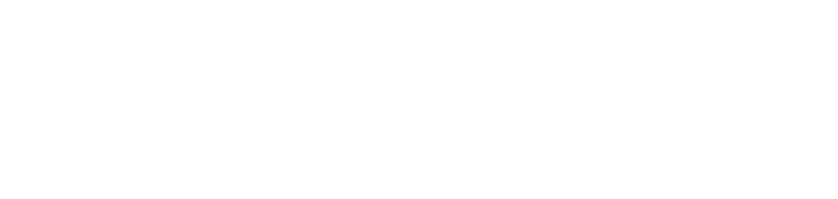 Southern Art-Wider World logo WHITE.png