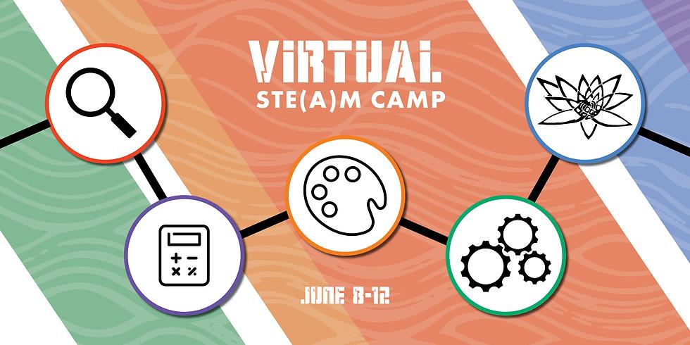 Virtual STE(A)M Camp