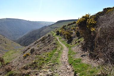 A walking trail in Exmoor