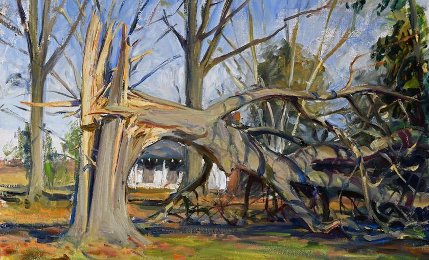 "Jason Bouldin (b. 1966), ""Broken Pecan in front of Daddy's Studio,"" 2013. Oil on Canvas."