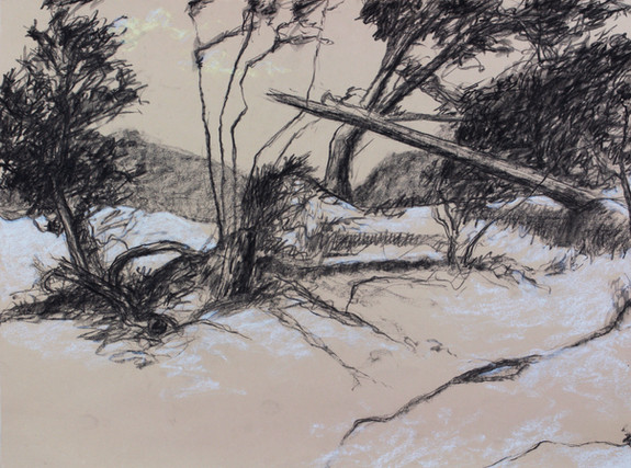 RMiller_Trees and Dunes, Northside_lowre