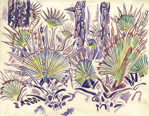 5. Palmettos and Pines, c. 1955. Watercolor on Paper. Permanent Collection. Gift of the Fr