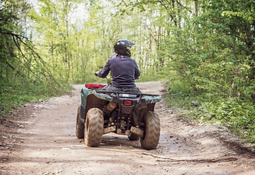 A quad biker in the forest