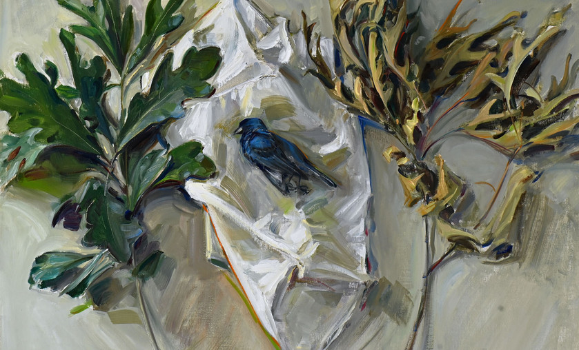"Jason Bouldin (b. 1966), ""Indigo Bunting,"" 2020. Oil on Canvas."