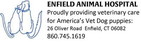 Enfield Animal Hospital 2(1) - Copy.png