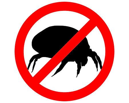 Was tun gegen Milben?