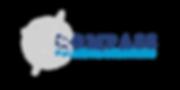 CFS Logo 2.png