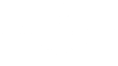msw_logo_wh.png