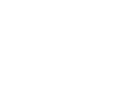 BoxerGin_Logo.png