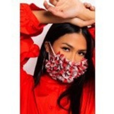 Red Plaid Lace Mask