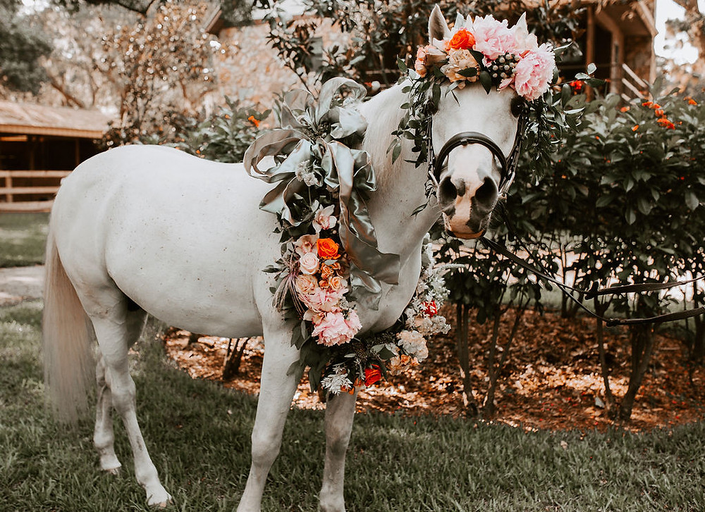 Beautiful Flower Wreath and Headpiece for White Horse