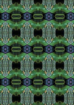 Kaleidoscope de corps humain
