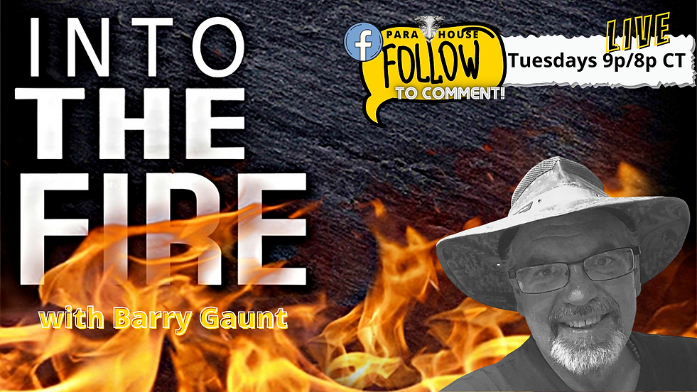 PARA HOUSE TV Barry Gaunt Into the Fire