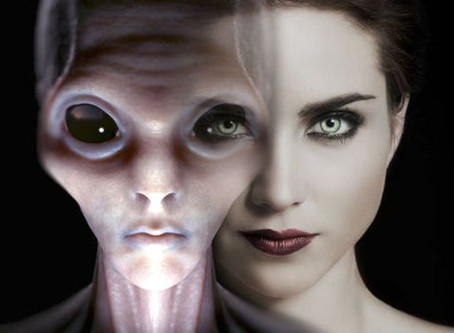 The Human Hybrid Theory