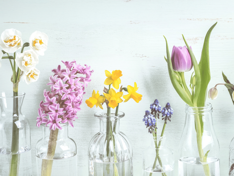 5 Simple Ways to Brighten up Your Home for Spring